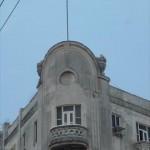 edificio11